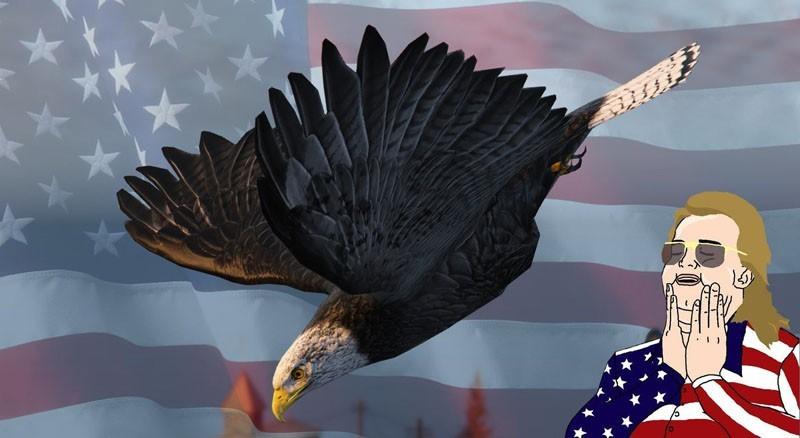 Hawk to American Eagle